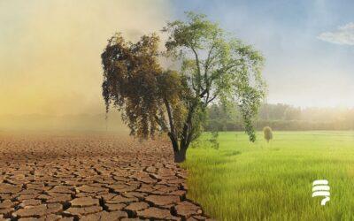 Nueva Ley de Cambio Climático y Transición Energética